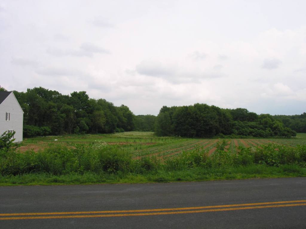 Land before building for Build a house on your land